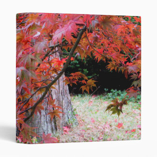 Maple and Cedar Binder