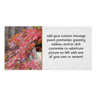 Maple and Cedar Custom Photo Card