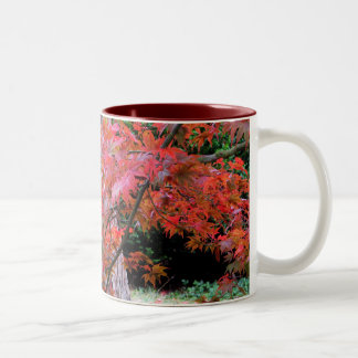 Maple and Cedar Two-Tone Coffee Mug