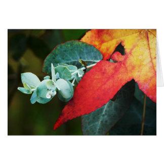 Maple and Eucalyptus Card