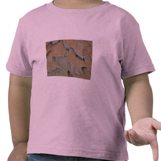Maple and oak leaves covered with hoar-frost tee shirt