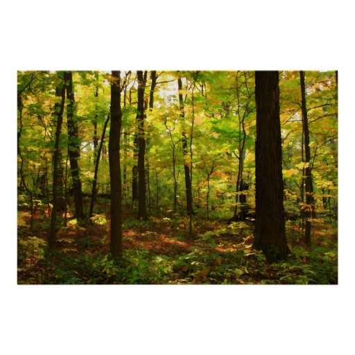 """""""Maple Forest"""" Print"""