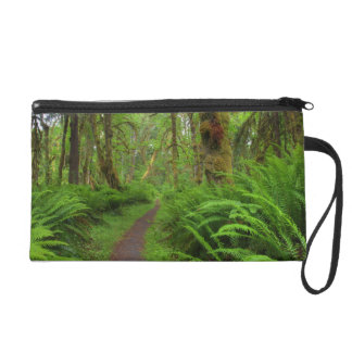 Maple Glade trail, ferns and moss covered Wristlet Purse