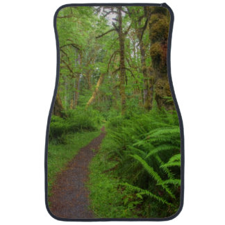 Maple Glade trail, ferns and moss covered Car Floor Mat