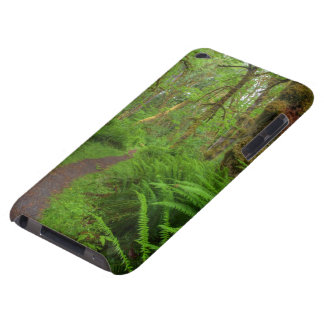 Maple Glade trail, ferns and moss covered iPod Touch Case-Mate Case