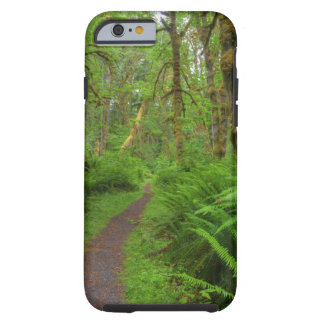 Maple Glade trail, ferns and moss covered Tough iPhone 6 Case