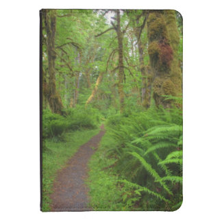 Maple Glade trail, ferns and moss covered Kindle Case