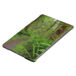 Maple Glade trail, ferns and moss covered iPad Air Case