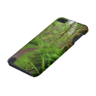 Maple Glade trail, ferns and moss covered iPod Touch 5G Covers