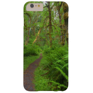Maple Glade trail, ferns and moss covered Barely There iPhone 6 Plus Case