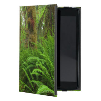 Maple Glade trail, ferns and moss covered Covers For iPad Mini
