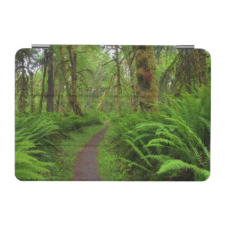 Maple Glade trail, ferns and moss covered iPad Mini Cover