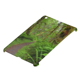 Maple Glade trail, ferns and moss covered iPad Mini Covers