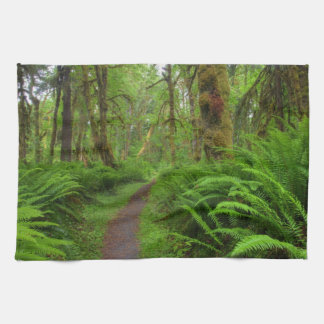 Maple Glade trail, ferns and moss covered Kitchen Towels