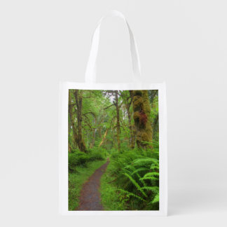 Maple Glade trail, ferns and moss covered Market Tote