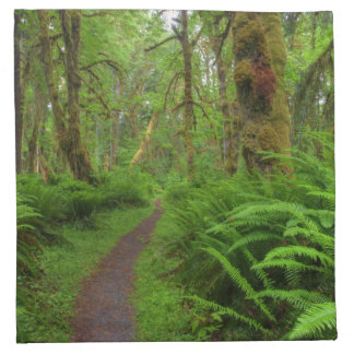 Maple Glade trail, ferns and moss covered Printed Napkins