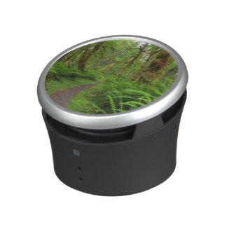 Maple Glade trail, ferns and moss covered Bluetooth Speaker
