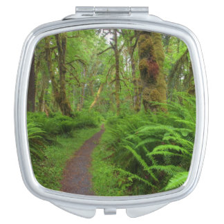 Maple Glade trail, ferns and moss covered Vanity Mirror