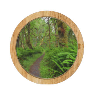 Maple Glade trail, ferns and moss covered Round Cheese Board