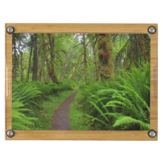 Maple Glade trail, ferns and moss covered Rectangular Cheese Board