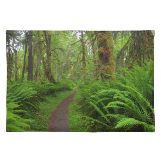 Maple Glade trail, ferns and moss covered Placemat