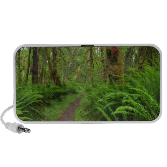 Maple Glade trail, ferns and moss covered Portable Speaker