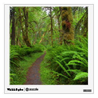 Maple Glade trail, ferns and moss covered Wall Stickers