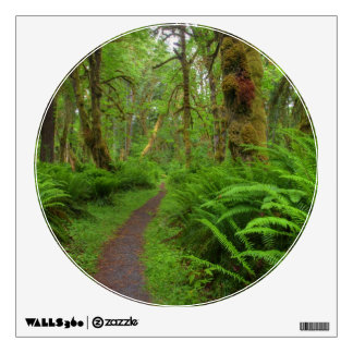 Maple Glade trail, ferns and moss covered Room Sticker