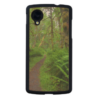 Maple Glade trail, ferns and moss covered Carved® Maple Nexus 5 Slim Case