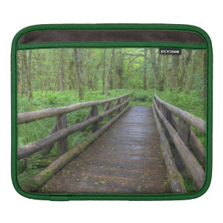 Maple Glade trail wooden bridge, ferns and iPad Sleeves