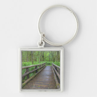 Maple Glade trail wooden bridge, ferns and Silver-Colored Square Keychain