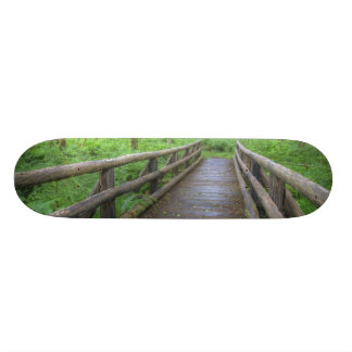 Maple Glade trail wooden bridge, ferns and Skateboard Deck