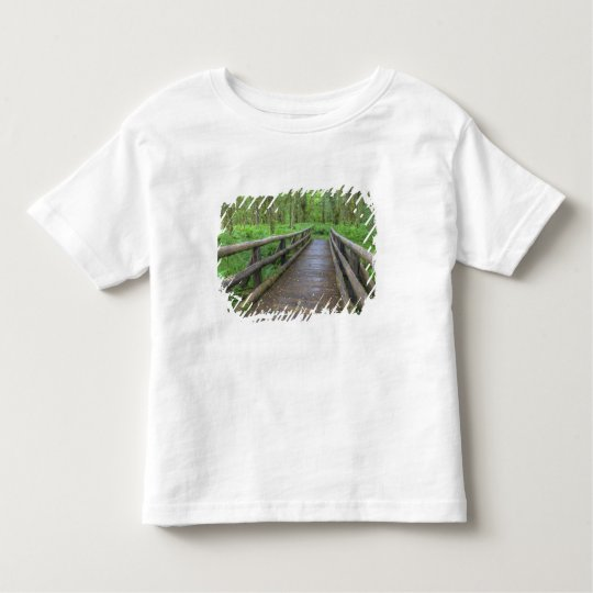Maple Glade trail wooden bridge, ferns and Toddler T-shirt