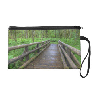 Maple Glade trail wooden bridge, ferns and Wristlet Purse