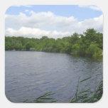 Maple Lake Sticker