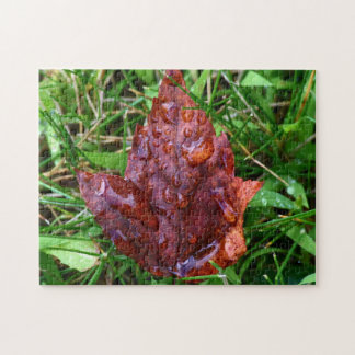 Maple Leaf After The Rain Jigsaw Puzzle