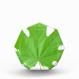 Maple Leaf Acrylic Award