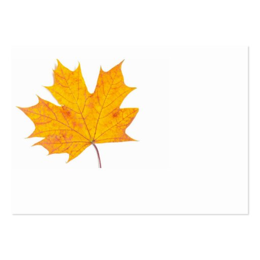 Maple leaf business card template