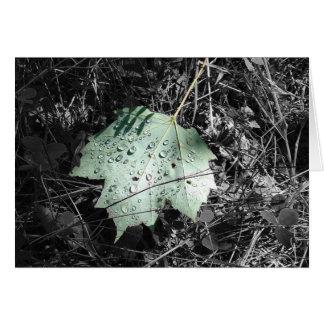 Maple Leaf Card