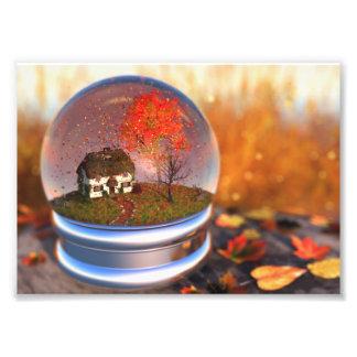 Maple Leaf Globe Photo Print
