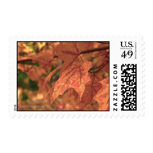 Maple Leaf HDR Postage Stamp