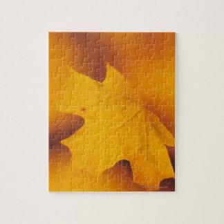 Maple leaf jigsaw puzzle