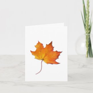 Maple Leaf Note Card card