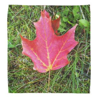 Maple Leaf on Grass Bandana