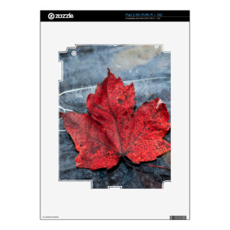 Maple leaf on ice iPad 2 decals