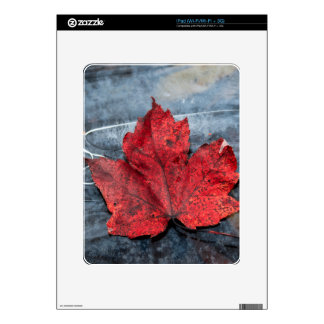 Maple leaf on ice skin for iPad