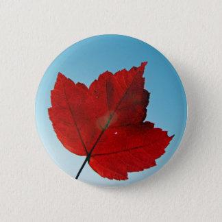 maple leaf pinback button