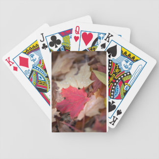 Maple Leaf Playing Cards