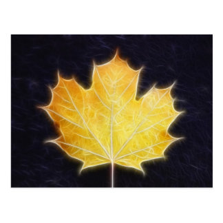 Maple Leaf Postcard