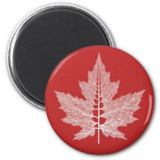 Maple Leaf Veins Magnet (Red)